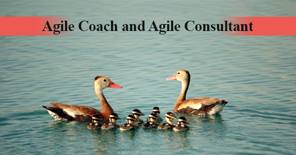 What is the difference between Agile Coach and Agile Consultant? | Simplilearn
